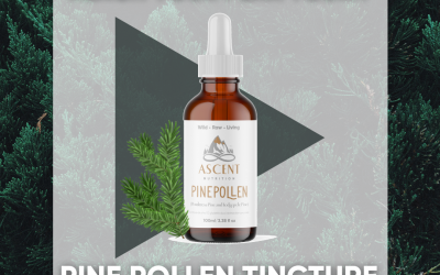 Reach Your Peak Today with Pine Pollen!