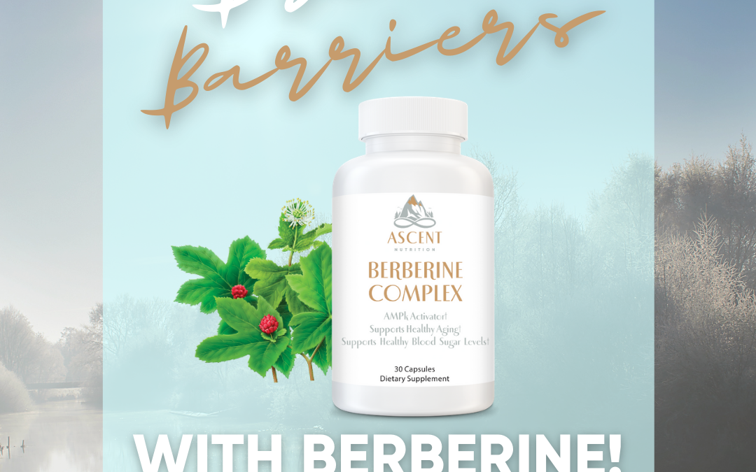 """Berberine Activates the """"Master Metabolic Switch"""" AMPK and Is A Huge Bio-Hack"""